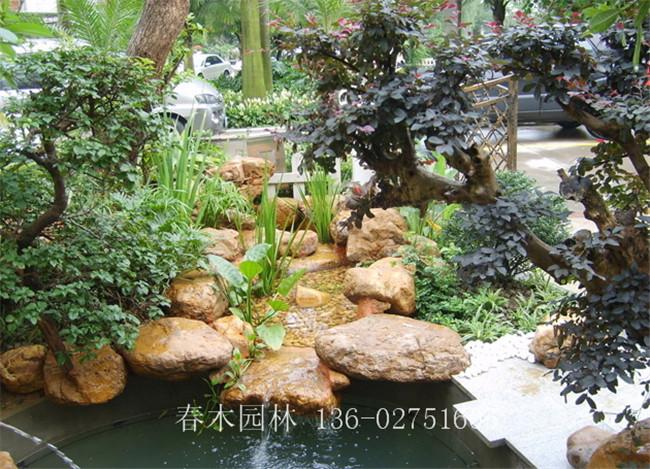 庭院鱼池假山设计,别墅锦鲤鱼池,广州鱼池设计,鱼池假山就找广州春木