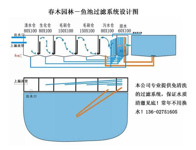 鱼池过滤系统设计示意图